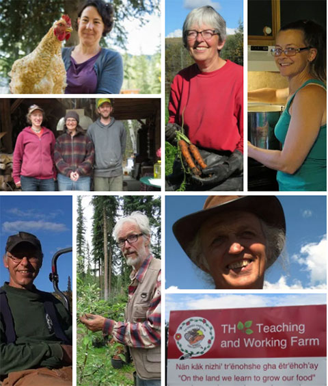 Suzanne's Blog: A Thanksgiving Message to Farmers