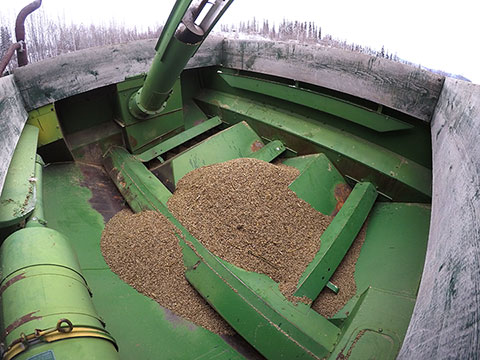 Suzanne's Blog: The Good News, Bad News Grain Story Continues