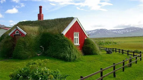 Farming, Fishing, and Foraging Keys to Iceland's Food Security
